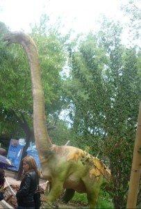 Zoo-retocada-2012-017-e1337540734437-203x300